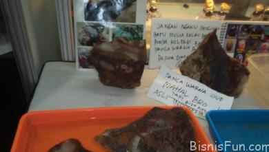 Harga Batu Panca Warna Raja Ampat