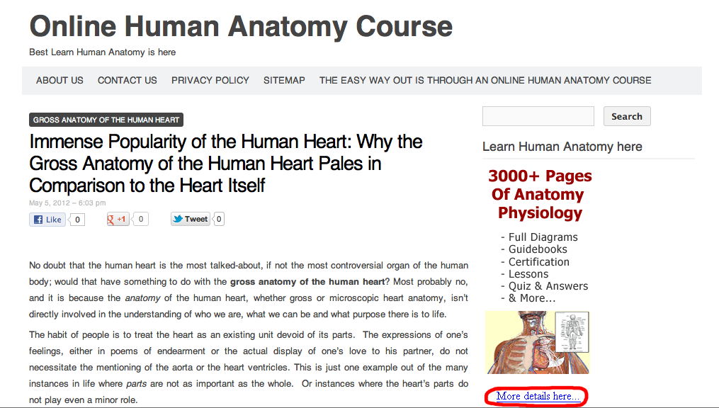 Human anatomy online course 1075742 - follow4more.info