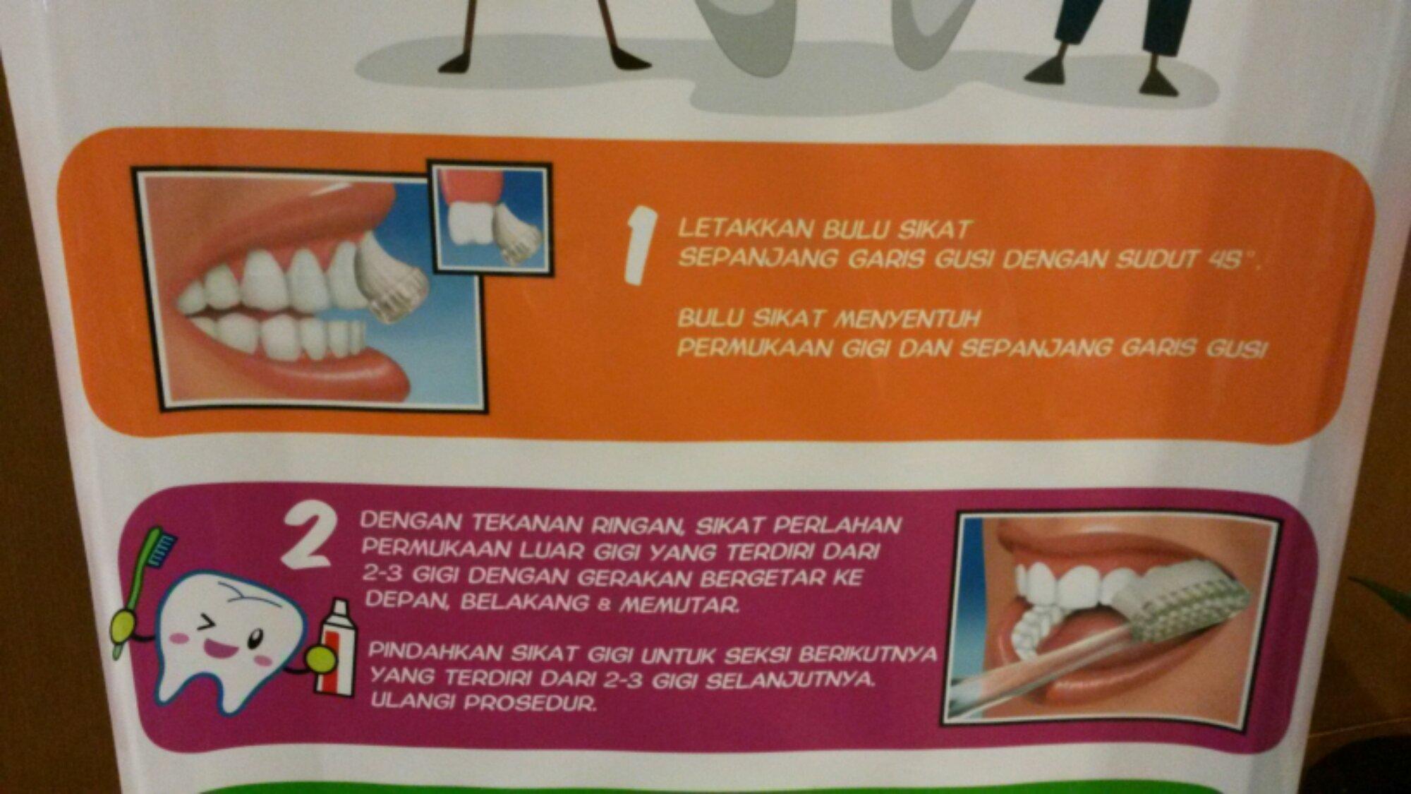 Bagaimana cara menyikat gigi yang baik dan benar agar tak sakit gigi ... 7d325833d7