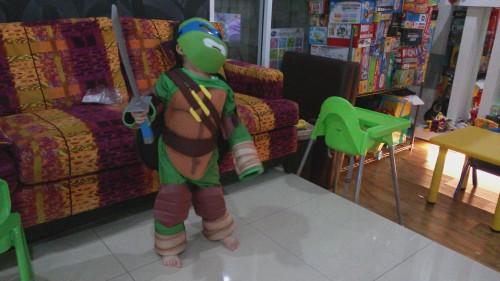 turtle costume 2014
